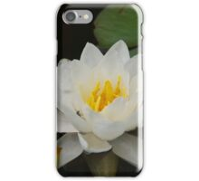Water Lily iPhone Case/Skin