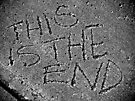 This Is The End by Ann Evans
