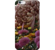 Chrysanthemum Garden iPhone Case/Skin