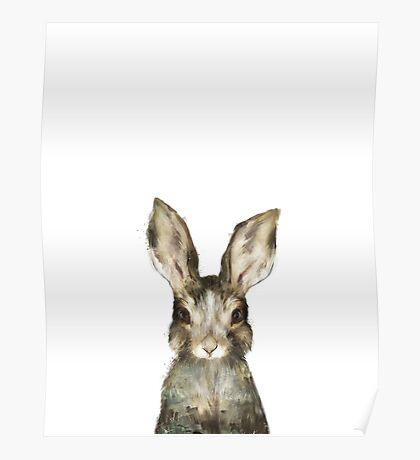 Little Rabbit Poster