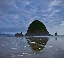 Haystack Rock by Ray4cam