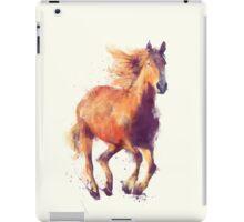 Horse // Boundless iPad Case/Skin