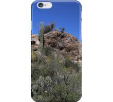Saguaro National Park Landscape 4 iPhone Case/Skin