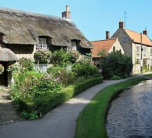 Thornton Le Dale, North Yorkshire by neilk