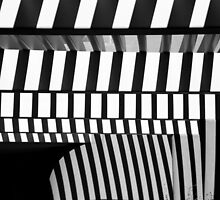 Saguaro National Park Visitor's Center 3 BW by marybedy