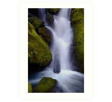 Whitehead Creek #6 - luminescence Art Print