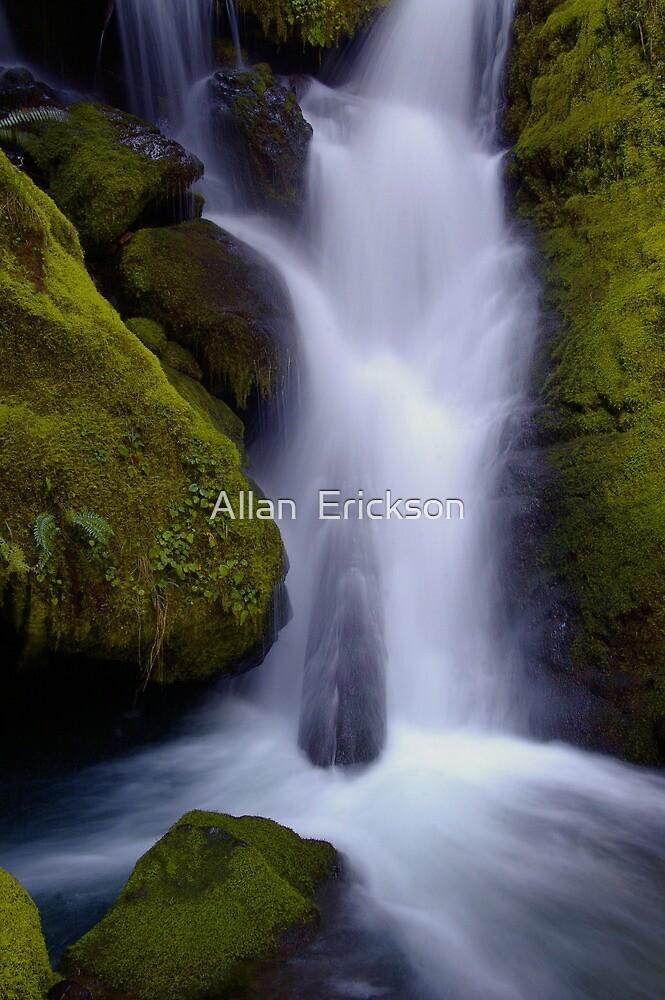Whitehead Creek #6 - luminescence by Allan  Erickson