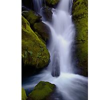 Whitehead Creek #6 - luminescence Photographic Print