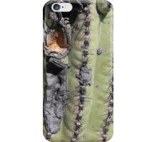 Saguaro Scar iPhone Case/Skin