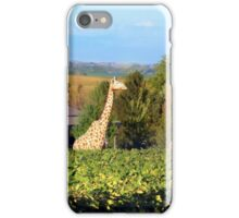 ~ This is Illinois! I think we're lost ~ iPhone Case/Skin