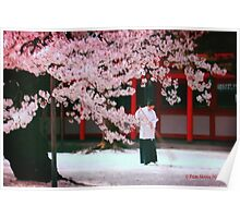 The Beautiful Cherry Blossoms Poster