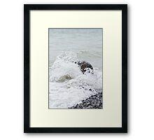 Shorelline - Presqui'le Provincial Park, Ontario Framed Print