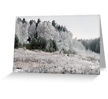 Frosted Landscape Greeting Card