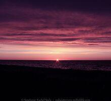 Blushing End by Stephanie Rachel Seely