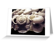 Swirled Collections Greeting Card