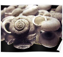 Swirled Collections Poster