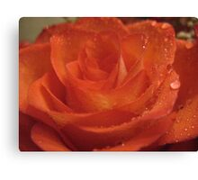 Ruby Lips Rose Canvas Print