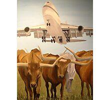 Herding Longhorns Photographic Print