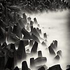 Dolos, Sea monsters  by marshall calvert  IPA
