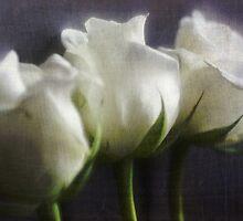 Mama Liked The Roses by inkedsandra