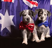 Aussie Icons by haylierose
