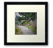 urban wildlife Framed Print