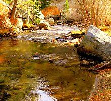 """""""Autumn On Bishop Creek"""" by Lynn Bawden"""