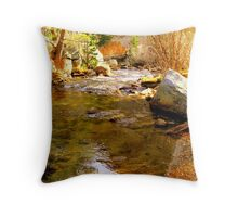 """Autumn On Bishop Creek"" Throw Pillow"
