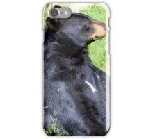 Brown Bear iPhone Case/Skin