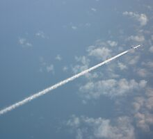 38,000 feet by frogwithwings