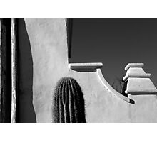San Xavier Wall Detail with Cactus BW Photographic Print