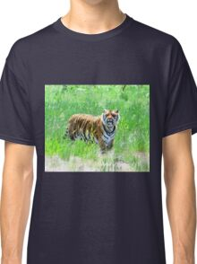 Bengal Tiger in Meadow Classic T-Shirt