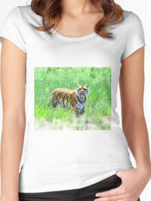 Bengal Tiger in Meadow Women's Fitted Scoop T-Shirt