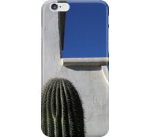 San Xavier Wall Detail with Cactus iPhone Case/Skin