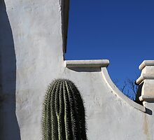 San Xavier Wall Detail with Cactus by marybedy