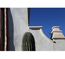 San Xavier Wall Detail with Cactus Photographic Print