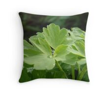 Dew Droplets - Early Morning in Marrawah Throw Pillow