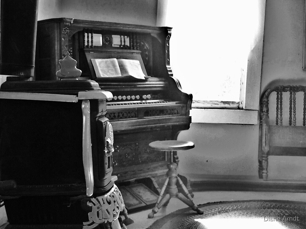 Old Organ by Diane Arndt