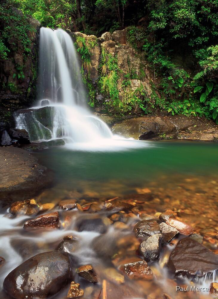 Waiau falls by Paul Mercer