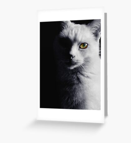 Feline and Proud Greeting Card