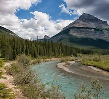 Blue Skies on the Icefields Parkway by Kristin Repsher