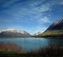 Along Alaska's Kenai Peninsula by Dyle Warren