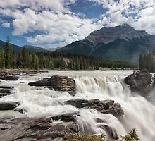 Roaring Athabasca Falls by Kristin Repsher