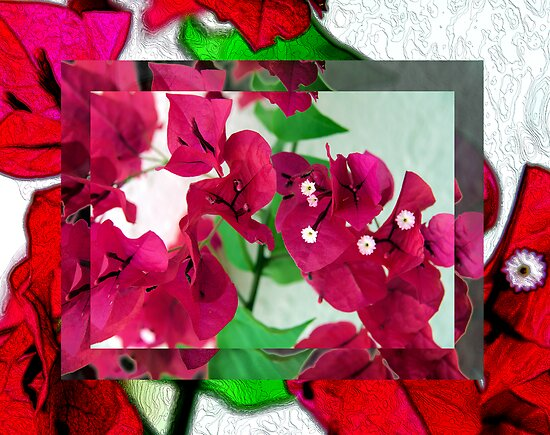 Bougainvillea Art by Kim McClain Gregal