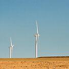 Windmill Farm by Amber Finan