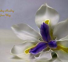 Sending Healing by Ricky Pfeiffer