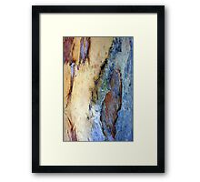 Blue Bark Framed Print
