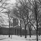 Snowy Day At Harvard by Alex Marshall