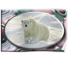 August Polar Bear Poster
