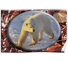 October Polar Bear Poster